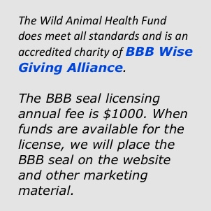 BBB WAHF logo
