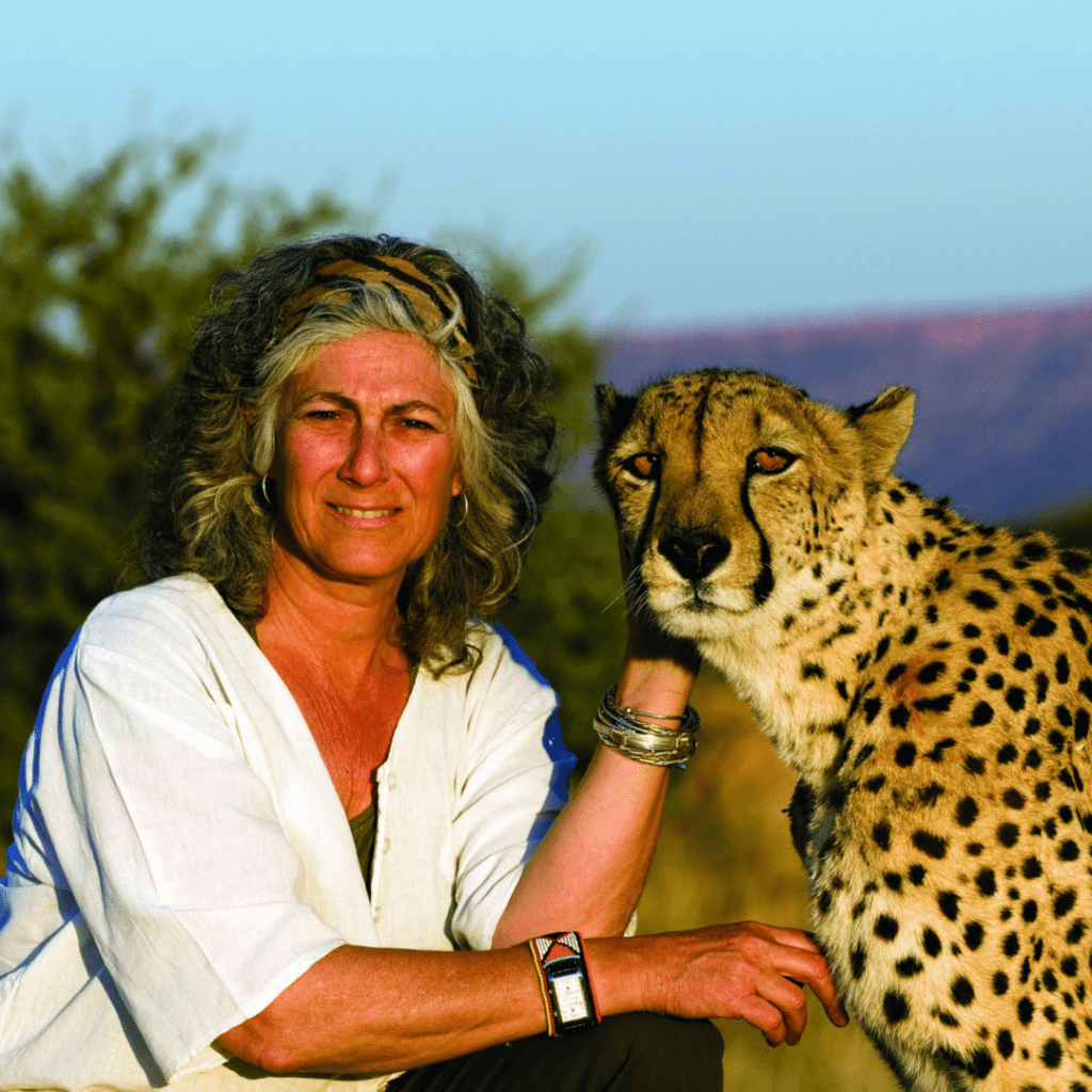 Dr. Laurie Marker poses with a cheetah, the sun bright on both of their faces.