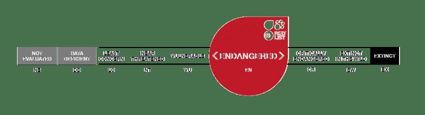 resized iucn image
